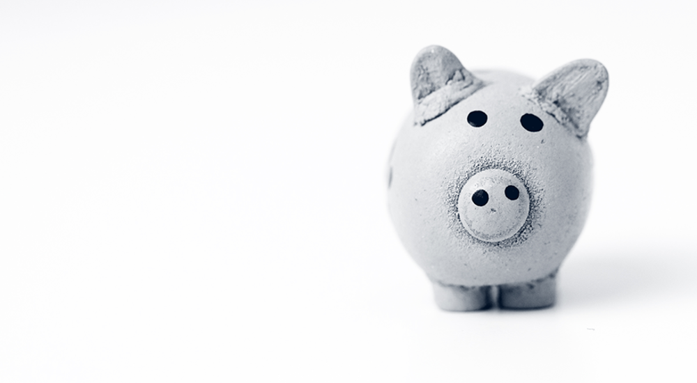AccountAbility Accounting Support piggy bank